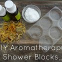 DIY Aromatherapy Shower Blocks