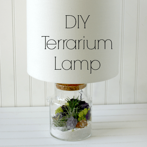 DIY Terrarium Lamp