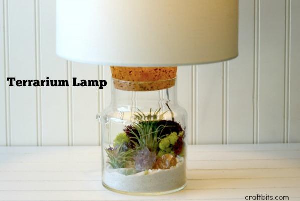DIY Terrarium Lamp - Gifts In a Jar - craftbits.com