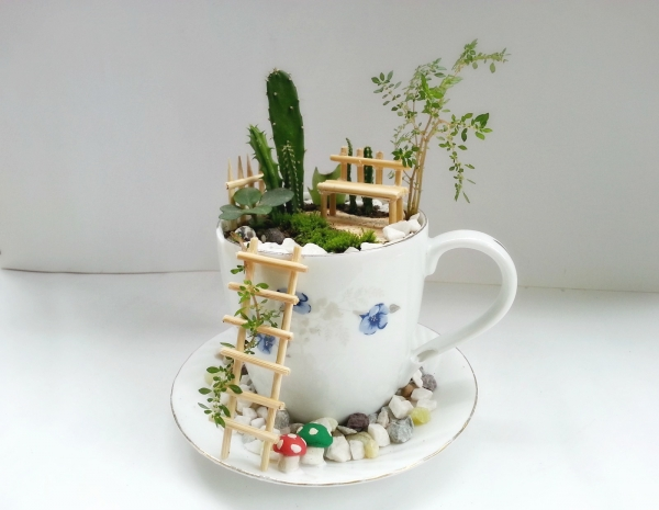How to make a garden in a teacup