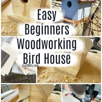 Beginners Easy Woodworking Bird House