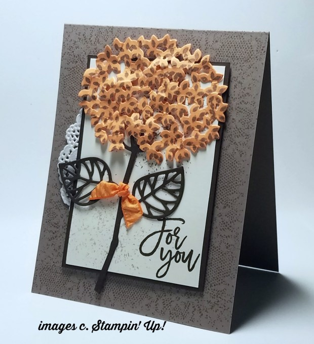 Thoughtful Branches Bundle still available while supplies last. Shop my online store http://craftcarnivore.stampinup.net