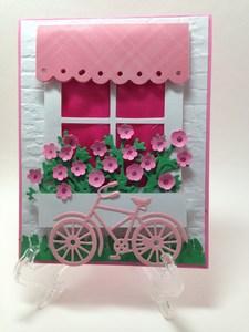 Window box flowers and bike