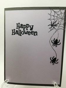 Spider eeek inside1
