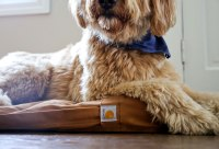 A Duck Bed For Your Dog  Crafted in Carhartt