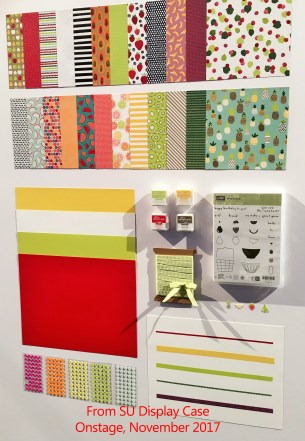 The Tutti Frutti suite includes gorgeous papers, ink spots, ribbon, and washi tape at www.lyndafalconer.stampinup.net