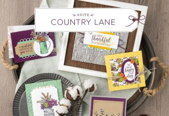 Country Lane Product Suite at www.lyndafalconer.stampinup.net