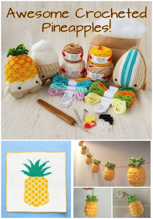 Check out these awesome crocheted pineapple projects rounded up by #craftevangelist