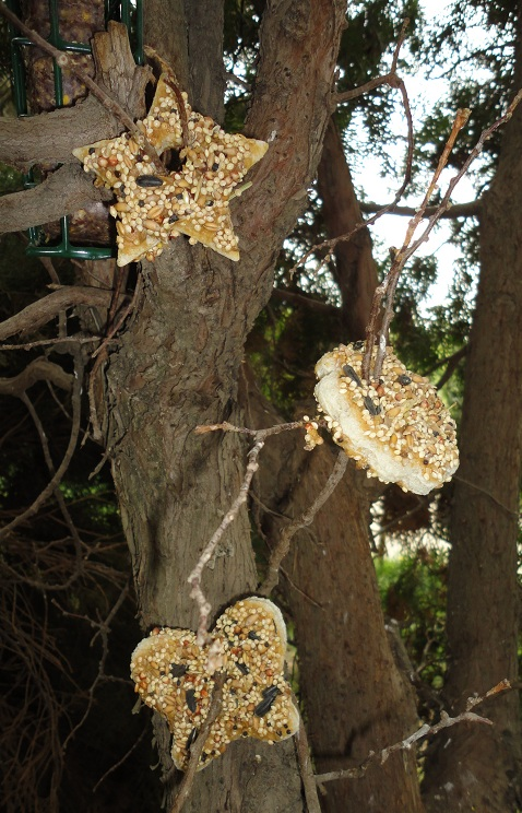 Craft Home And Garden Ideas Completely Edible Bird Feeder