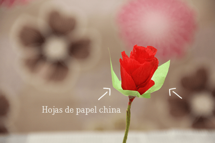 Haz una flores de papel crepé para regalar a tu mamá //  DIY Crepe paper flowers for Mother's Day