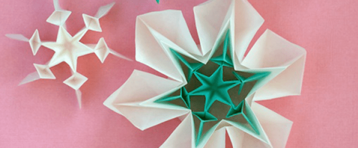 5-kawasaki-snowflake