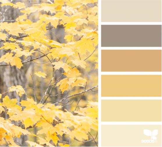 Combinaciones de colores de otoño