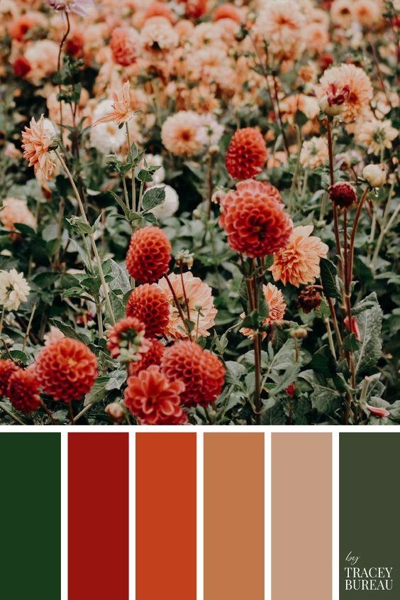 Combinaciones de colores de otoño: Flores