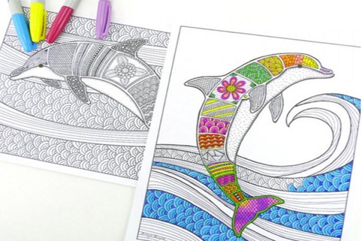 delfines-colores