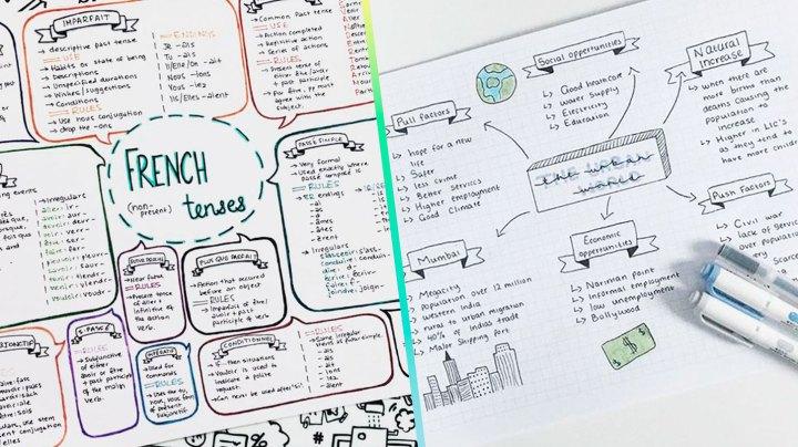 Mapas mentales: ideas para apuntes organizados y perfectos.