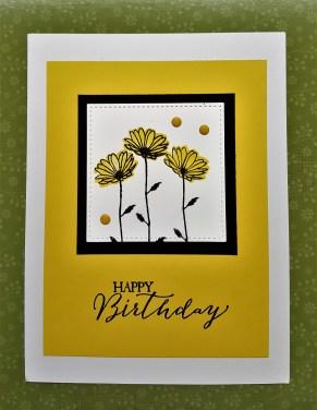 daisy delight 2