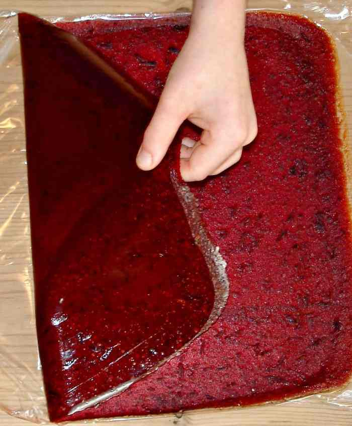 Yummy, healthy, super-easy and cheap to make - Fruit Leather is the ultimate in grab and go snacks!