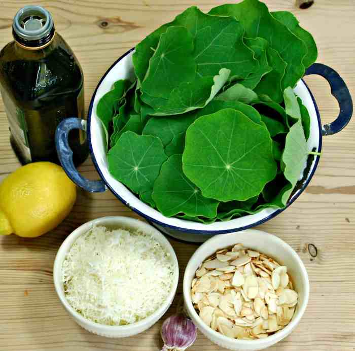The wonderful peppery flavour of Nasturtium leaves works really well in this simple and quick pesto recipe.  This recipe could easily  be adapted for any flavoursome leaf that you fancy.
