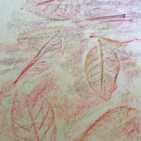 rubbing-leafs-fall-art-projects