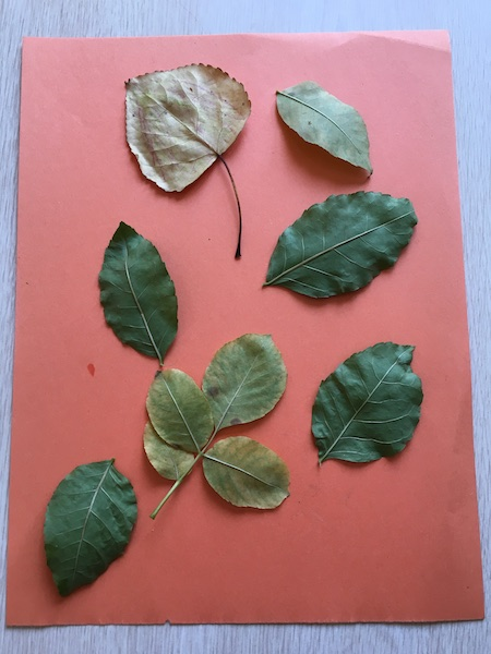 Nature arts and crafts for preschoolers using leaves and crayons