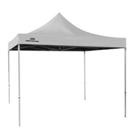 Art Tent with 10x10 Canopy
