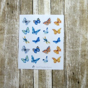 Colorful Wings Deco stickers