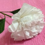 3 Easy Designs Of Crafts Out Otissue Paper How To Make Tissue Paper Flowers Making Tissue Paper Flowers
