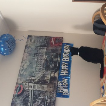 Table in the corner, with birthday banner, and a black cat staring up at a balloon (Loki)