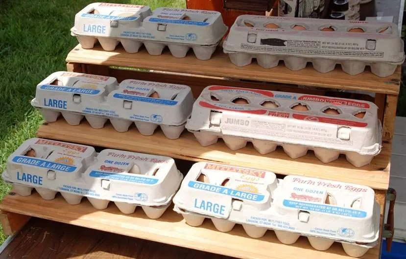 Craftsbury Farmers Market Vendor Products - Free range chicken eggs