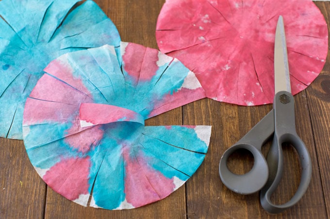 coffee filter that has been cut with scissors