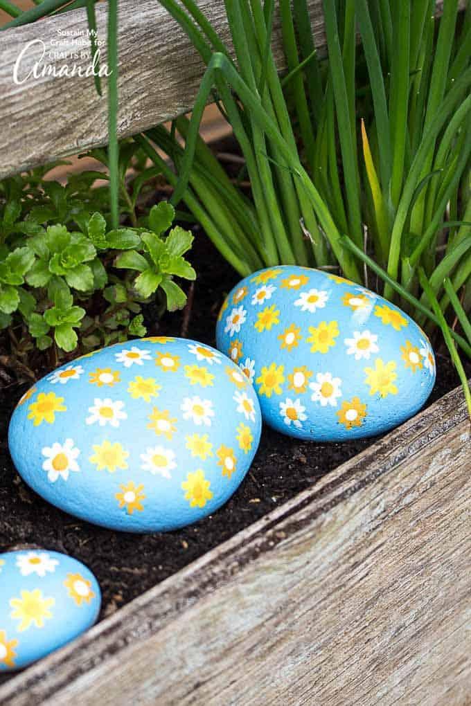daisy painted rocks a