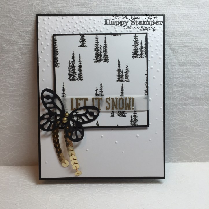 Stampin Up, Snow Place, Clean and Simple, Winter Wonderland