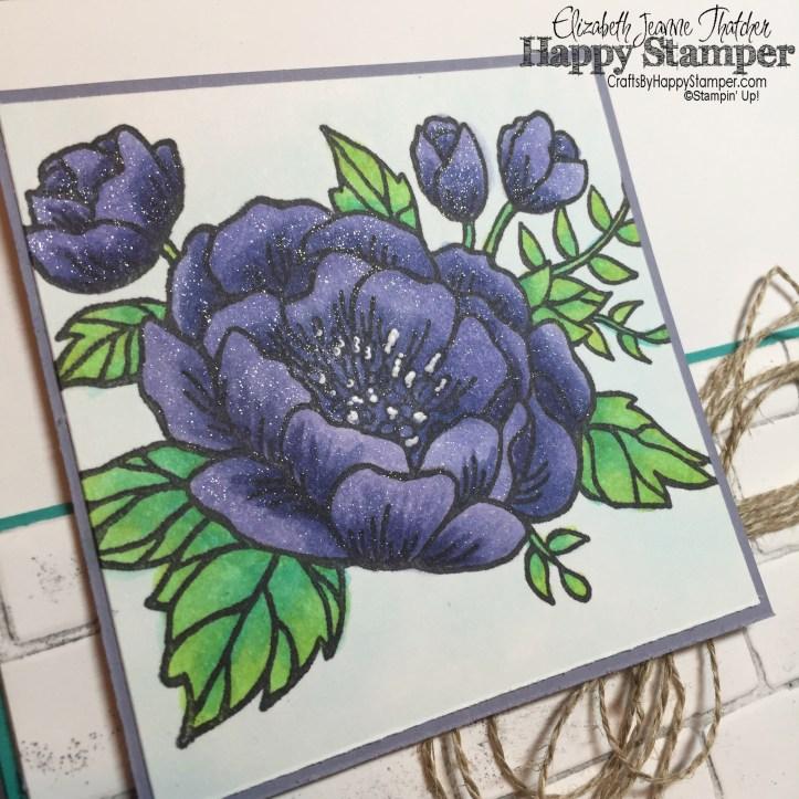 Birthday Blooms, Stampin Up, Brick Wall, CYCI