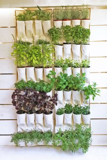 Diy Herb Garden Ideas 'll Obsess Over In 2019