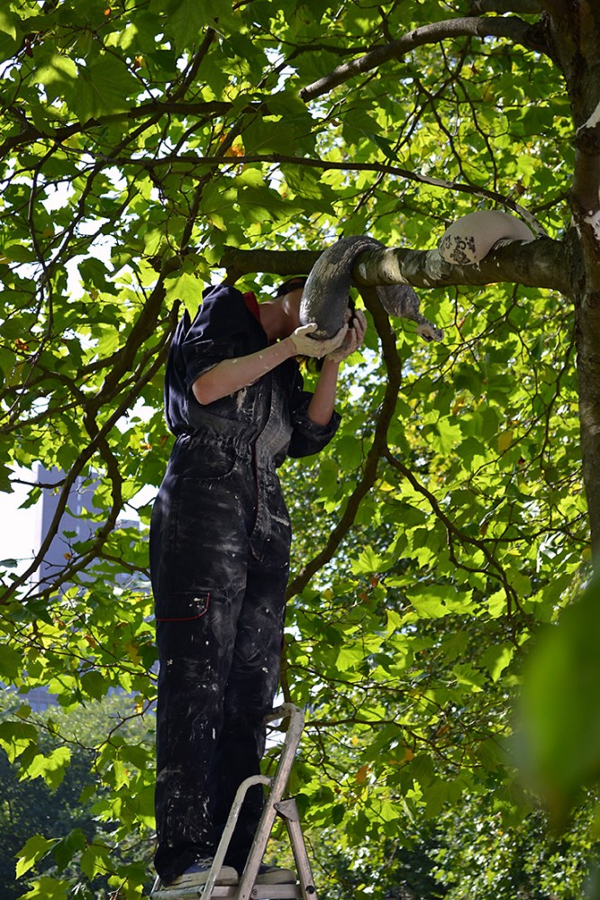 The artist places their artworks in a tree by using a ladder.