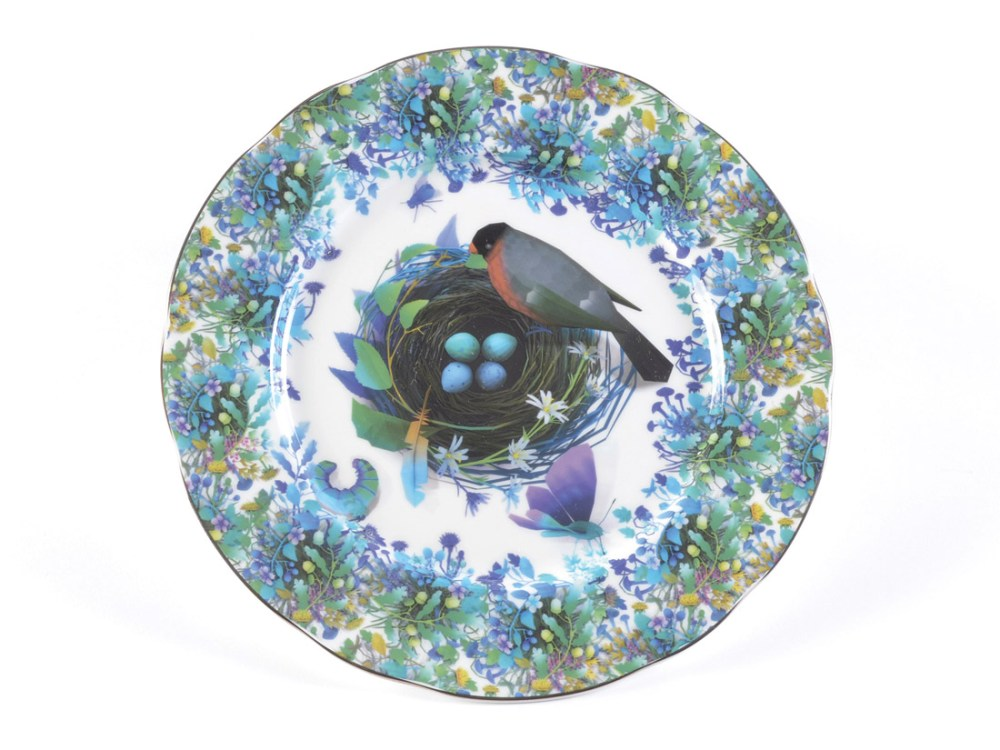 ceramic plate with printed images of birds nest, bird and flowers