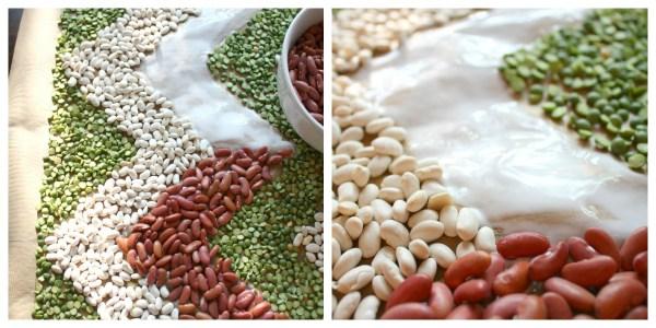 Detail of bean gluing process.