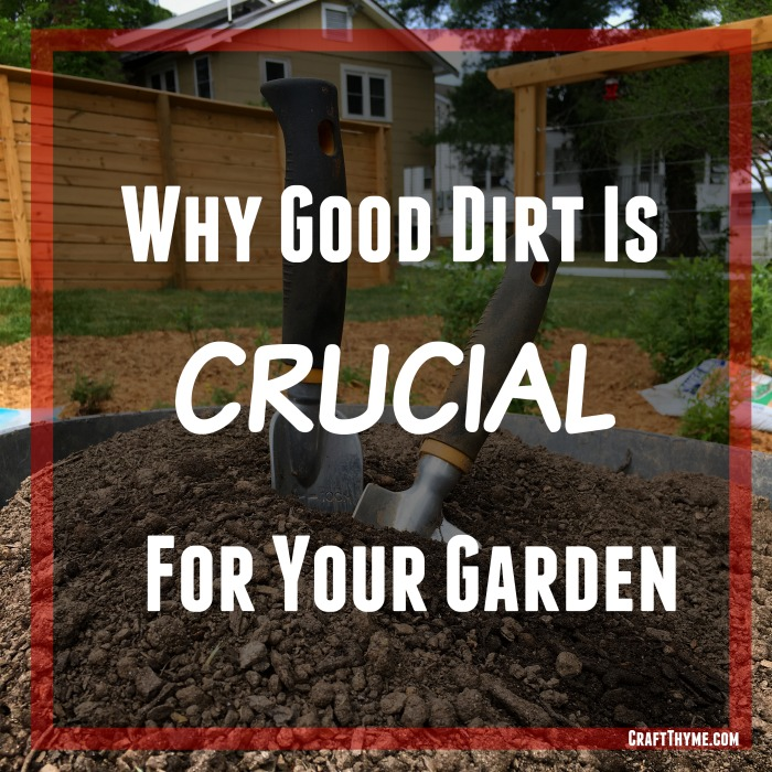 Why good dirt and soil is crucial for your garden