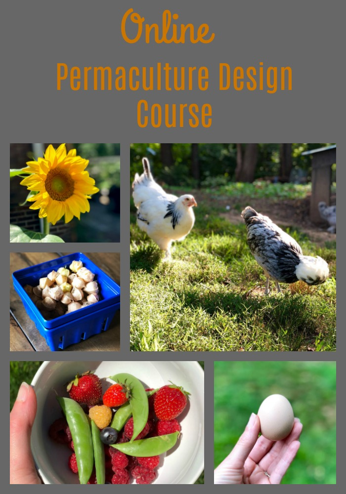 Follow along as I work through a fully online Permaculture Design Course (PDC) held by Oregon State University.