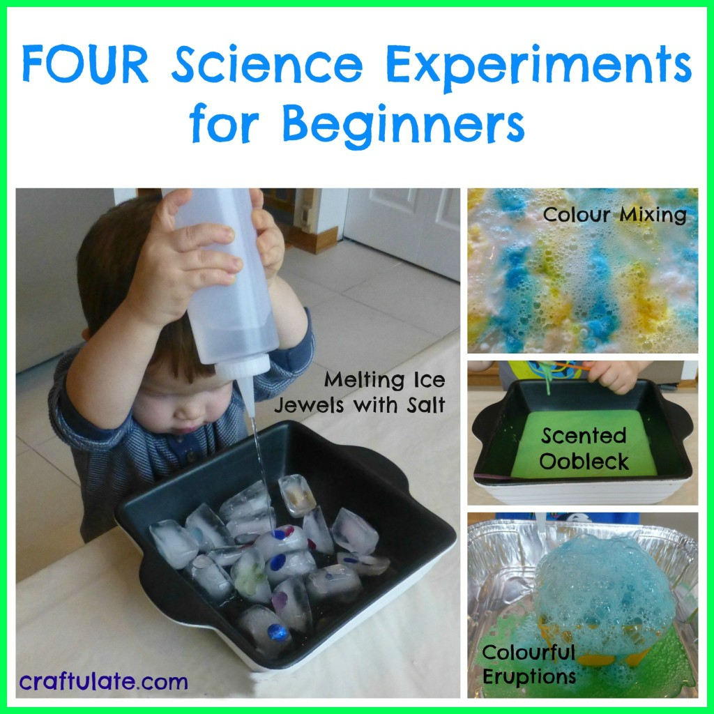 Four Science Experiments For Beginners From Craftulate