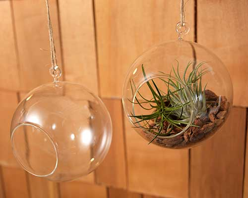 Hanging Glass Balls