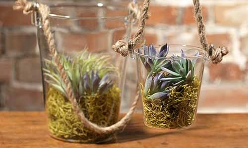 Glass Buckets
