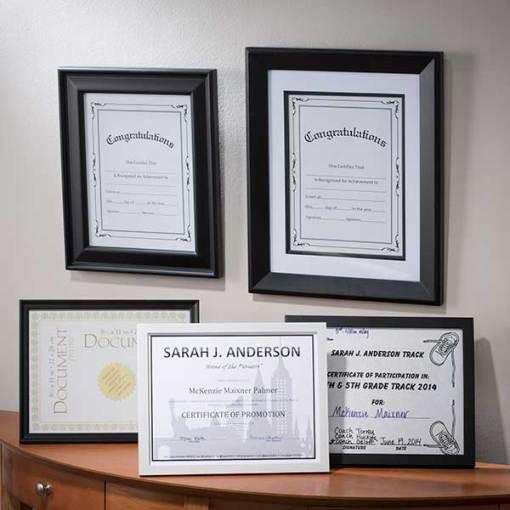"8 1/2"" x 11"" Document Frames"