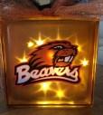 beaver block3-diy