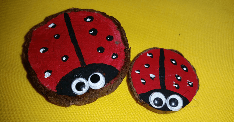 Lady Bug Magnet @ Medford Location | Medford | Oregon | United States