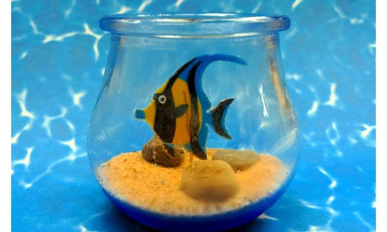 Mini Aquarium @ Craft Warehouse @ Gresham Station | Gresham | Oregon | United States