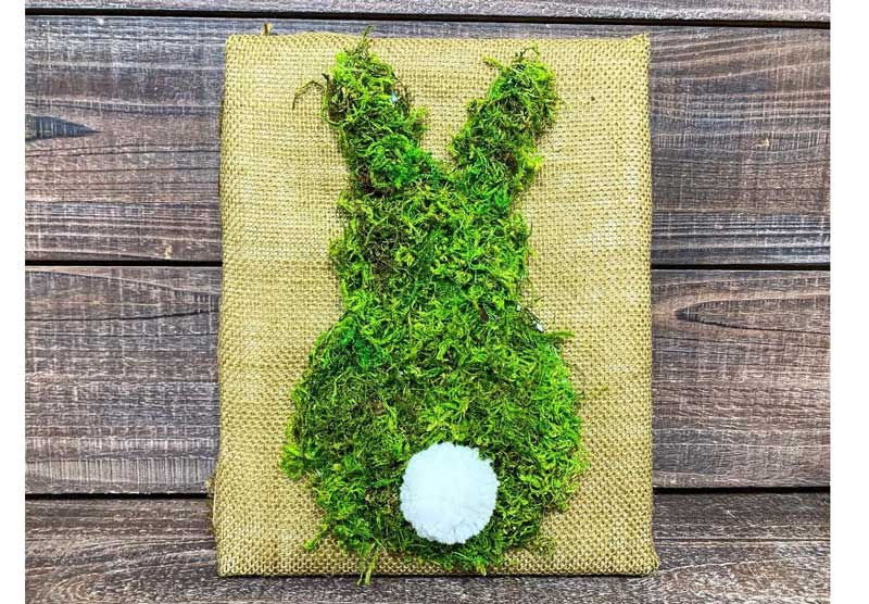 Moss Bunny @ Hazel Dell Location | Gresham | Oregon | United States