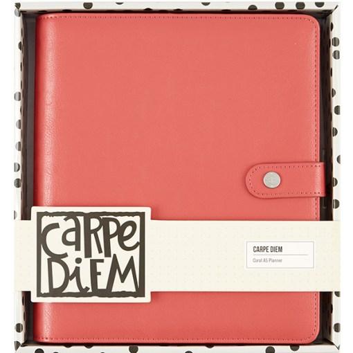 The Carpe Diem Planner is Coral