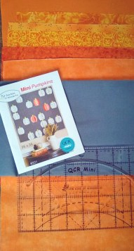 Making Quilt with Mini QCR Ruler
