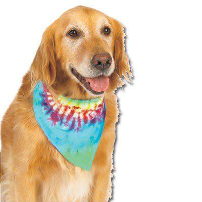 tie=dye-pet